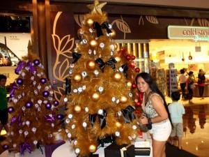 Chtistmas decoration Marina Bay Singapore