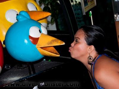 Rechel Serona the Angry Bird