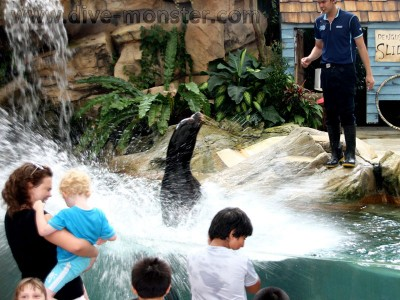 Singapore-Zoo-13