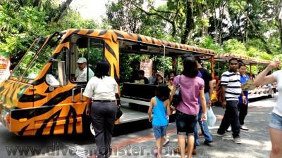 Tram in Singapore Zoo