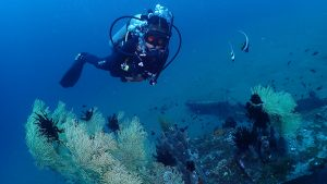 PADI Advance Open Water Course - Daisy the Dive Monster Jr.