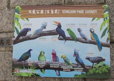 Hong Kong Trip - Kowloon Park - Aviary
