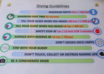 Diving in Dauin - Diving Rules